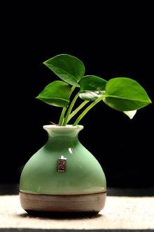 创意摆件手工个性时尚小花器家居装饰品水培花插花瓶$13.9-创意花瓶图片